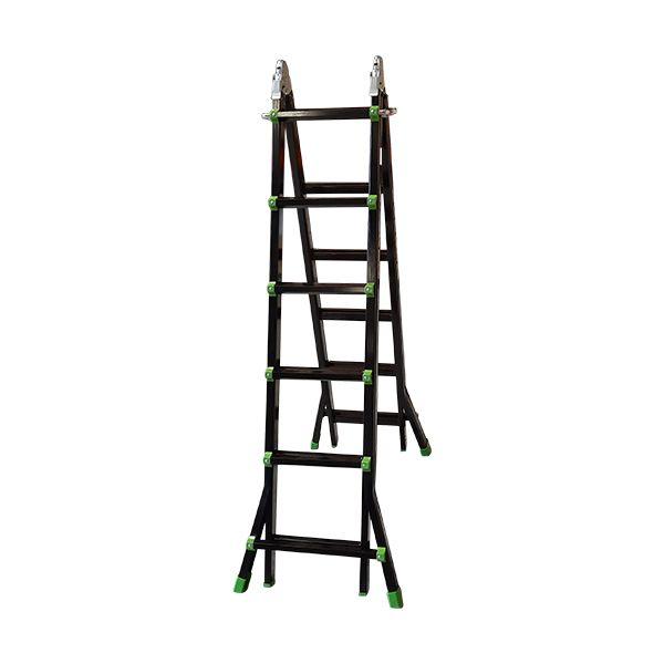 Multi-purpose Ladder Black/ Green